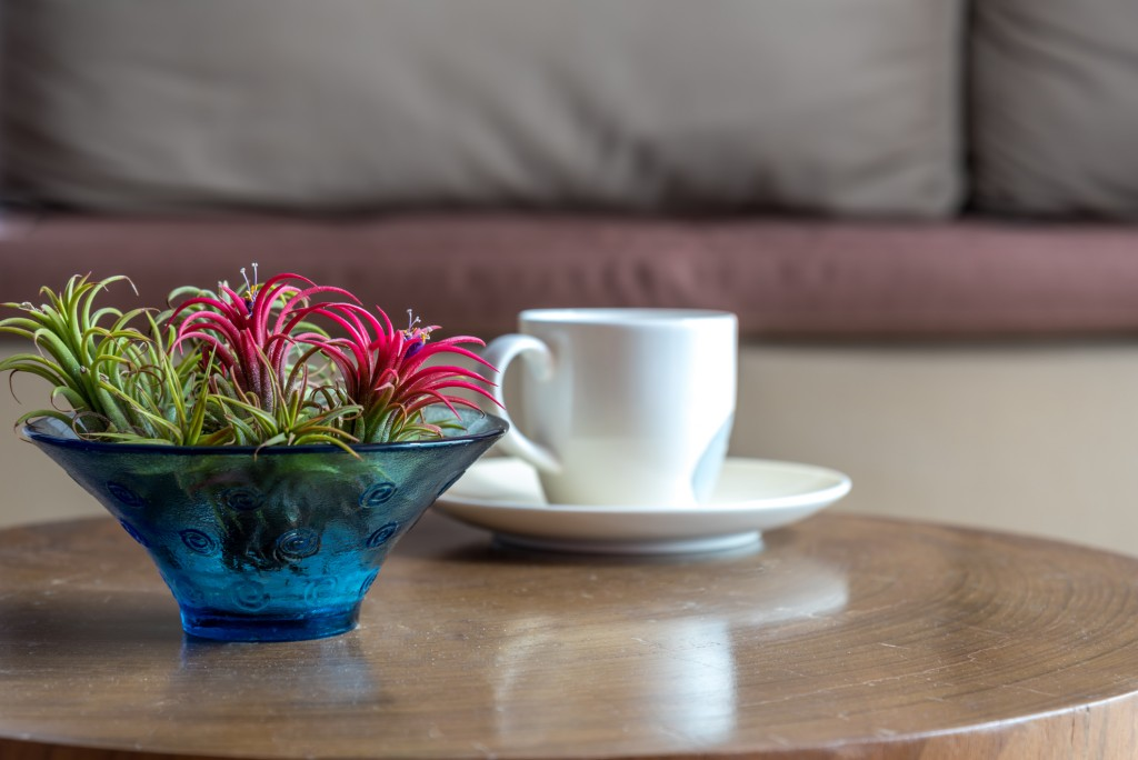 Flower vase & coffee cup on wooden table with couch background / lifestlye & home decoration conceptual