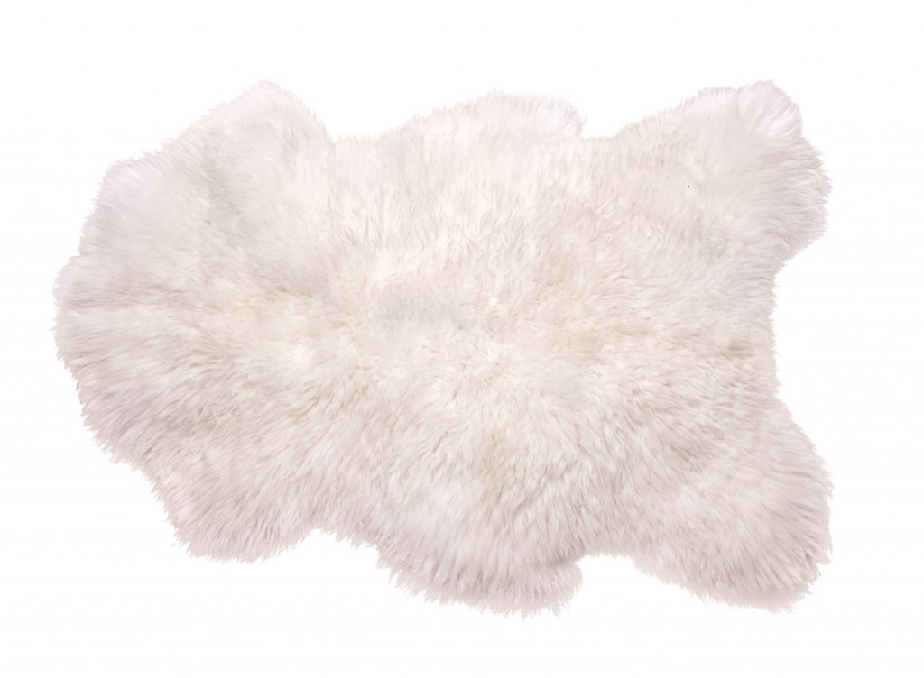 Beautiful white sheepskin isolated on white background. Warm carpet.